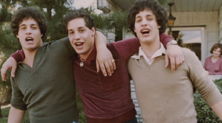 TV-tip: Three Identical Strangers